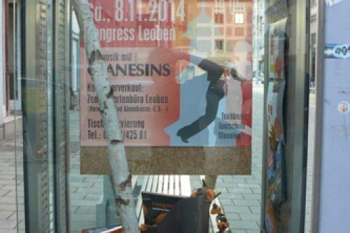 Vitrinengestaltung-Leoben-Innenstadt-Imagio-Herbst-Deko-Dekoration2